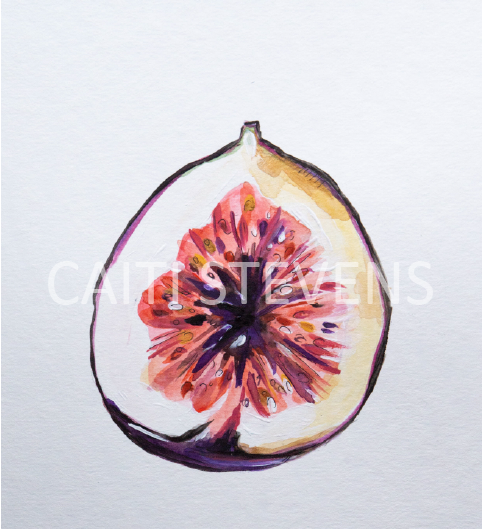 FIG PAINTING