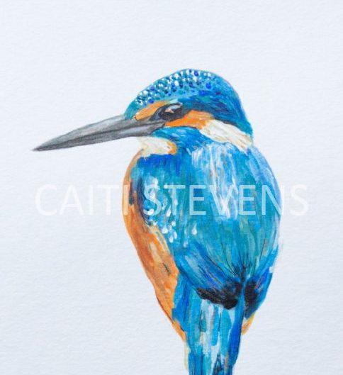 Kingfisher painting