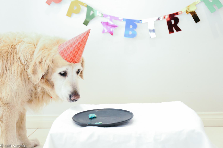 bella birthday cake